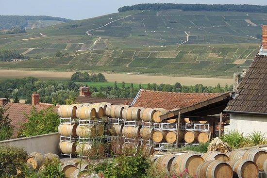 パリからシャンパン地方へのプライベートワインツ...