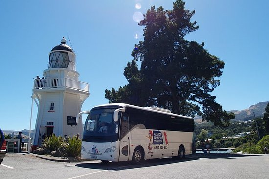 Akaroa French Connection Daily Shuttle
