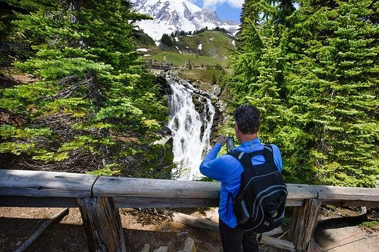 Tour per piccoli gruppi del Monte Rainier da Seattle