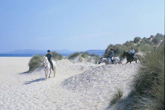 Équitation de plage privée sur le...