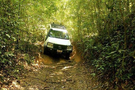 Barron Gorge y Kuranda National Park...