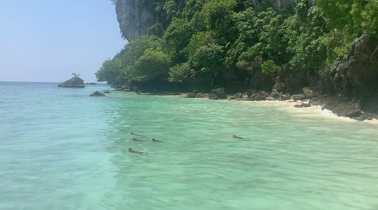 12 Islands Overnight Tour: Monkey beach