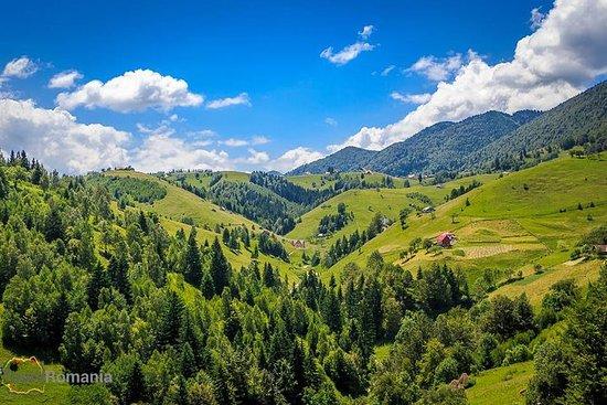 3-dagers tur fra Bucureşti: Transsylvianske landsbyer og...