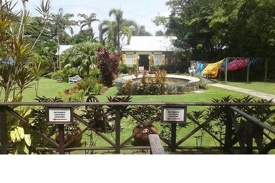 Zdjęcie Discover St Kitts Tour (Reconfirm 48 hours)