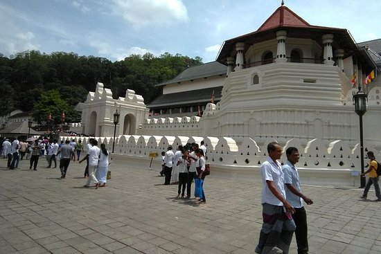 Gita giornaliera all-inclusive Kandy e con le attrazioni selezionate
