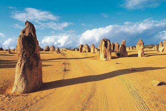Tour giornaliero su fuoristrada da Perth nel Deserto dei Pinnacoli