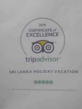I received certificate from Tripadvisor .