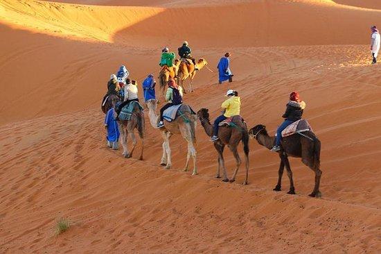 Morocco SM Tours