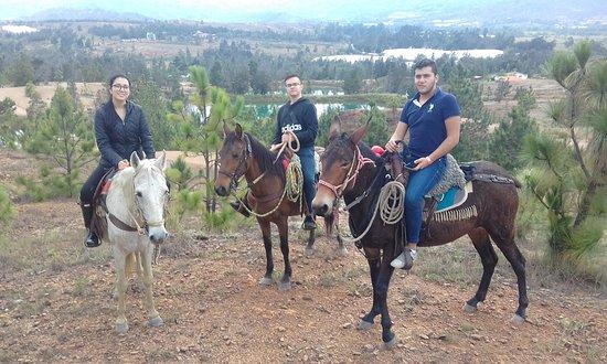 Cabalgatas la Soga paseos  a Caballo villa de leyva Boyaca Todos los sitios  Turisticos contactos  3115752137  3192129523