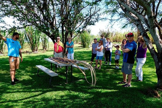 Maui Upcountry Farms Tour - Explorez...