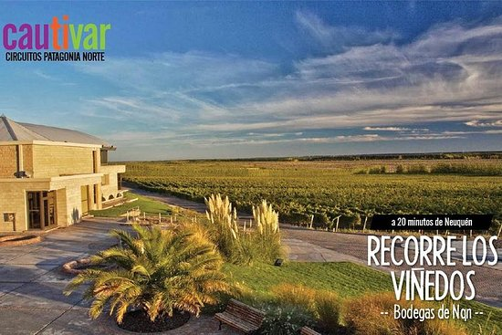 Wineries and Agrotourism