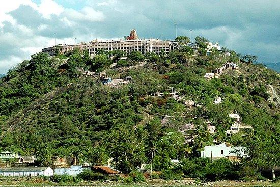 Sacred Pilgrimage Tour to Palani from Madurai