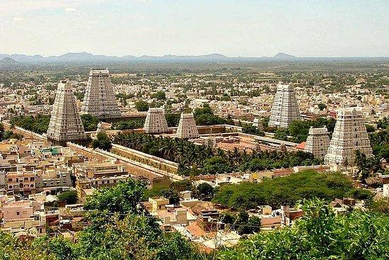 Tour de pèlerinage sacré - Temple Tiruvannamalai et Sri Ramana Ashram...