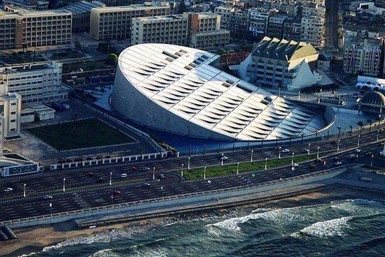 Privat heldagstur til Alexandria fra...