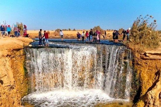 Privat tur til Fayoum Oasis & Wadi Al...