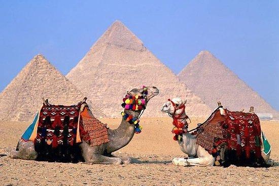 吉薩金字塔,孟菲斯和薩卡拉私人遊(全日遊)