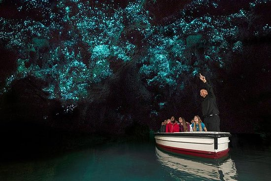 Waitomo Glow Worm Cave Tours From...