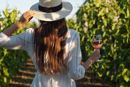Visite d'une journée complète sur le vin et tout ce qui se passe...