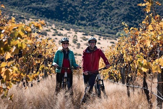 Bike The Wineries 3/4 Day Tour...