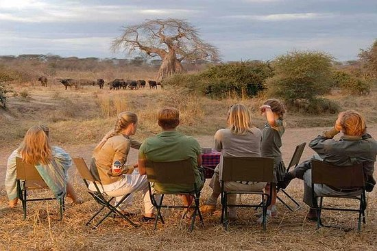 6 días mejor del norte de Namibia...