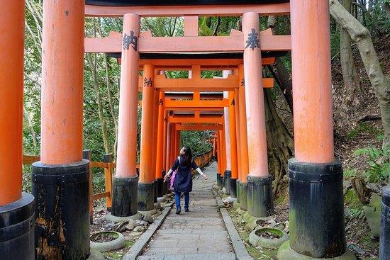 Explorez le Japon: petit groupe de 20 jours