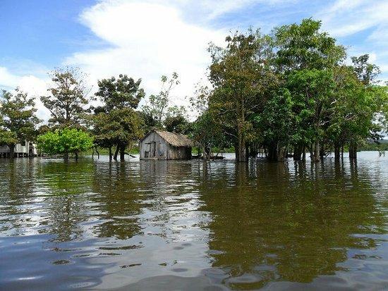 Lago do maicá Santarém Pará. Passeio de lancha com Elvis Tour. 093 991319245.elvis tour Santarém. Conforto lazer e segurança.