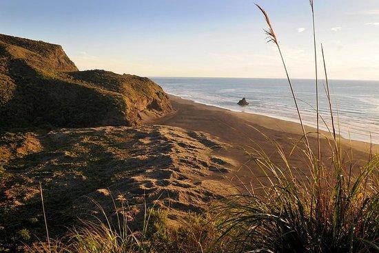 Full-Day Wild West Coast Photo and...