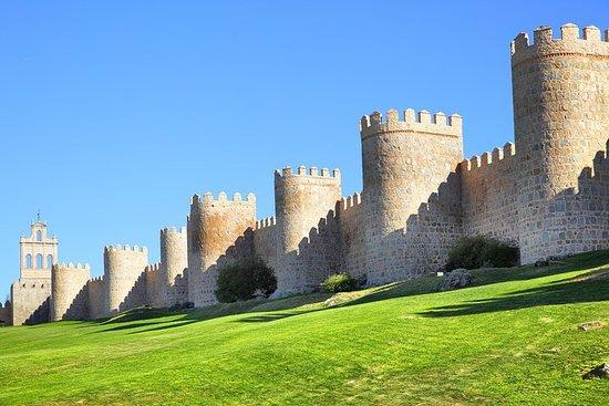 Avila en Salamanca Tour vanuit Madrid