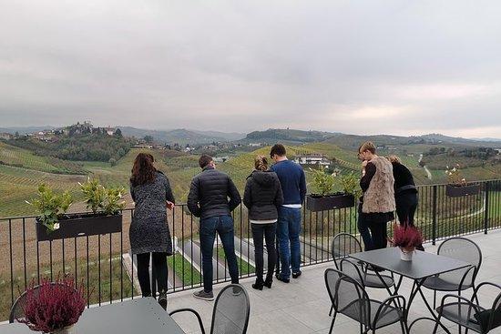 Barolo&Barbaresco wine tour with a local winemaker