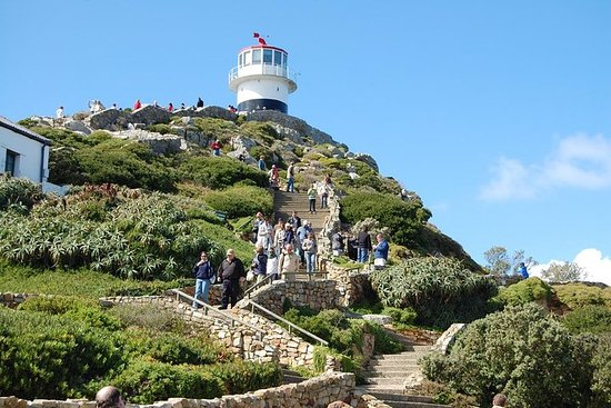Cape Point Sightseeing Tour Resmi