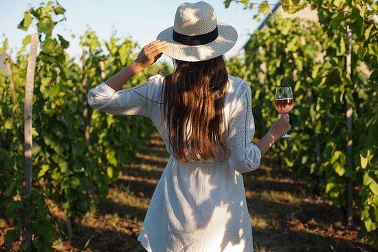Dégustation de vins gastronomiques à...