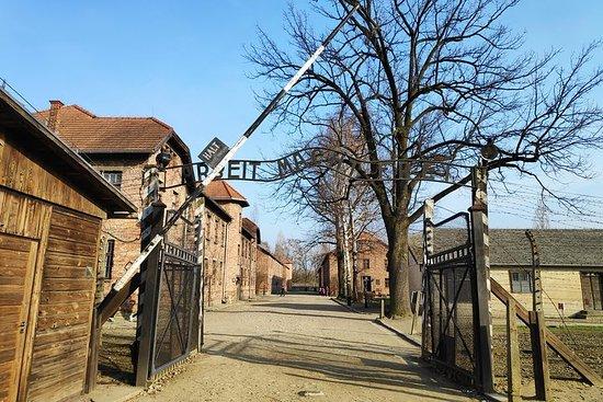 Auschwitz-Birkenau y mina de sal en...