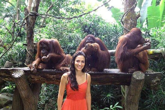 Zoológico de Cingapura com traslado e...