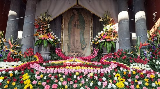 Guadalupe's altar is especially lovely this time of year!