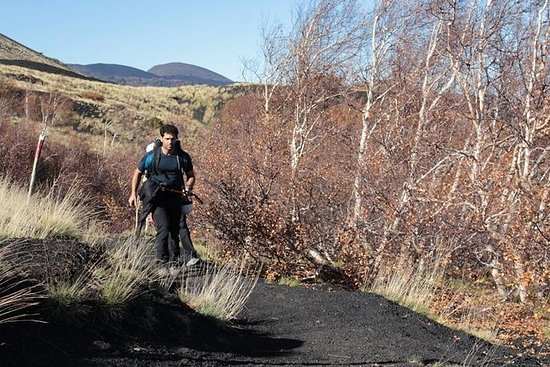 Etna Trekking Half-Day Tour from...