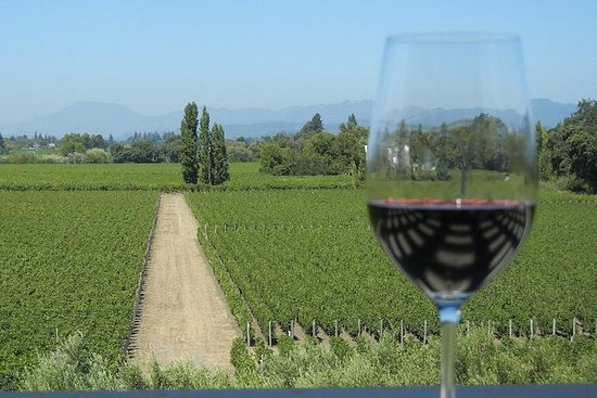 Small-Group Vintage Wine Country Tour...