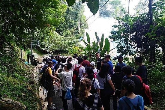 Penang: joyaux d'une demi-journée autour de l'île