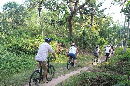 Alappuzha - remansos e praias - passeio de bicicleta