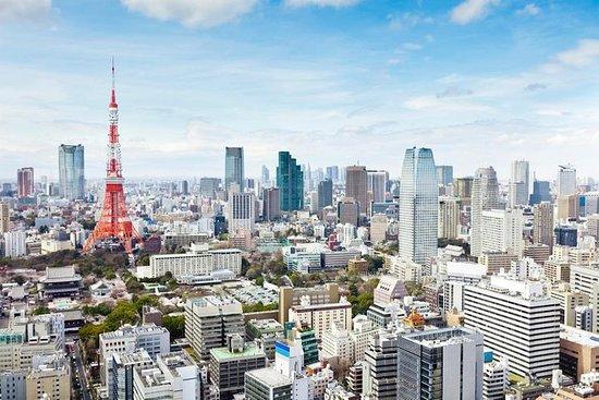Tokyo halvdag privat tur med nasjonalt lisensierte guider