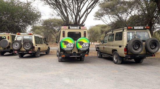 Tarangire National Park, Tanzanie : Leyu Tours safari jeep ready for Tarangire adventure this day! - Book with us for your next safari . Email: adventure@leyutours.com | WhatsApp: +255784063026