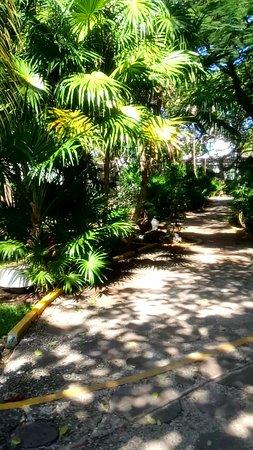 Hotel Faranda Dos Playas