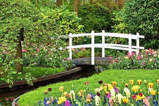 Visite privée des jardins de Tulip...