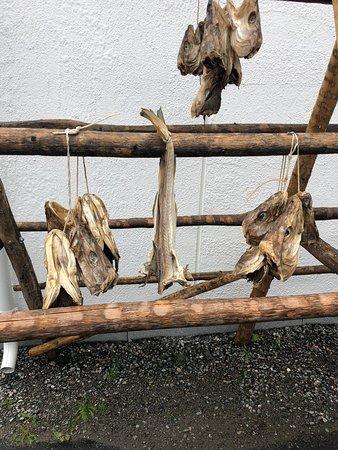 Nordland, นอร์เวย์: Essiccazione merluzzo