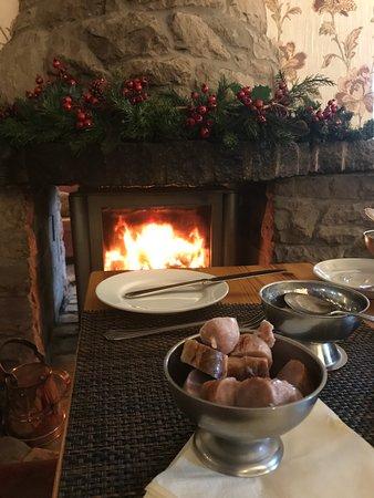 Dog breakfast by the fire