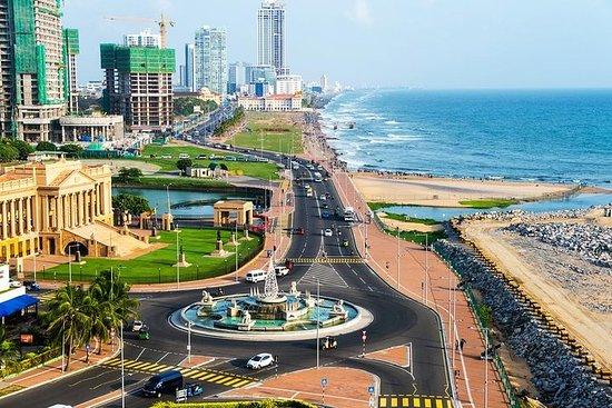 11 Days In Sri Lanka - All Inclusive...