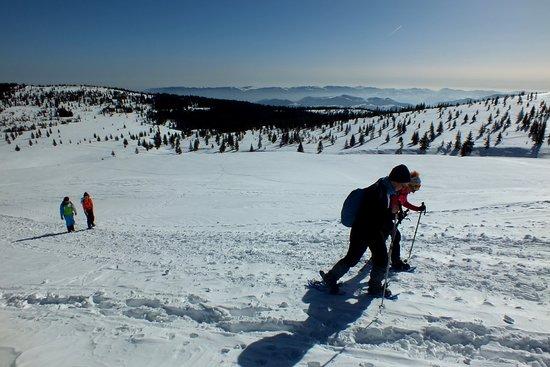Winter snowshoeing
