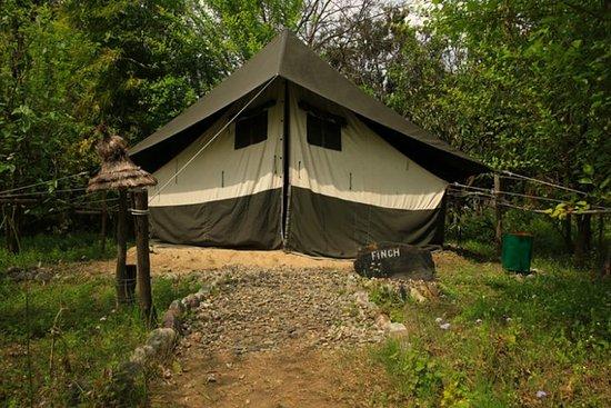 Ramnagar Camping Trip
