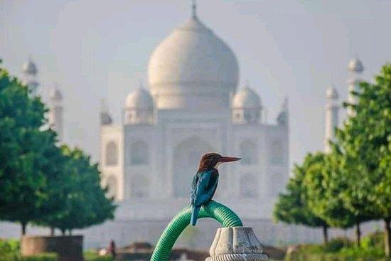 Excursión de 2 días a Agra con...