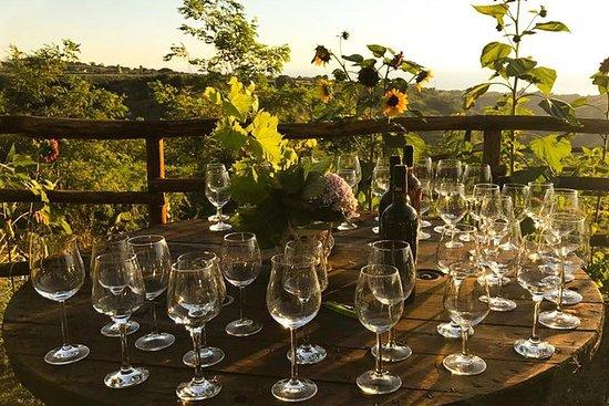 Degustación de vinos y productos...