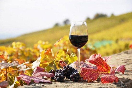 Visite privée: Dégustation de vins d'une journée complète Naousa...